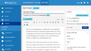 aquila admin theme edit page
